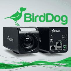 <b>BirdDog PF120 NDI Box Camera</b>